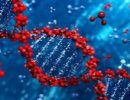 Ученые обнаружили 15 генов, вызывающих быстрый рост плоскоклеточного рака головы и шеи