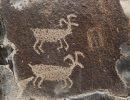 В Карелии появится туркомплекс, посвященный петроглифам
