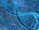 Гены выживших видов не дали достоверной информации о вымираниях прошлого