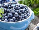 Эта ягода нормализует уровень холестерина