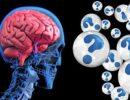 Найден ответственный за неправильное питание участок мозга