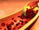 Медики рассказали, в каком возрасте нужно начинать следить за холестерином