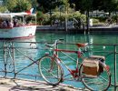Велосипедные маршруты в Ленобласти – запускают три новых
