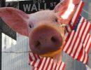 В Китае обнаружили новый штамм свиного гриппа